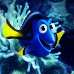 How to Paint Dory From Finding Nemo
