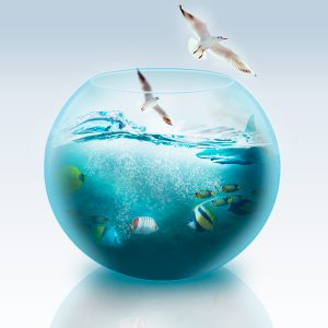 Fish Bowl Manipulation - 123RF Tutorial